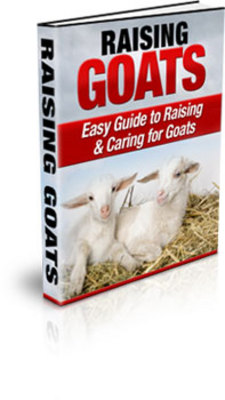 Product picture *BEST* Raising Goats - Easy Guide to Caring & Raising Goats!